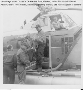 Unloading Caribou at Deadmand Pond